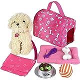 Amazon.com: Journey Girls Pet Set: Toys & Games