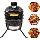CHARAPID Mini Egg Kamado Ceramic Grill 12 Inch, Charcoal BBQ Grill and Smoker for Camping and Picnic