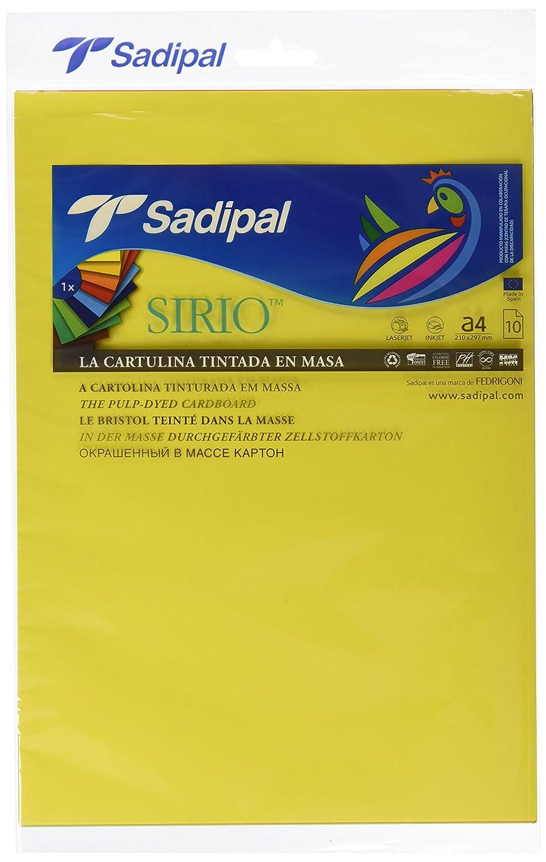 Sadipal 7387-Set di 10 supporti di cartone, formato A4, colore: multicolore