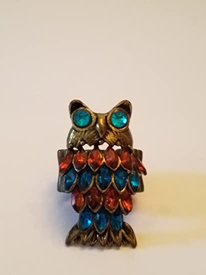 bcae04a8f8 Amazon.com   cute oversized Colorful Owl Ring with nice large blue aqua  color eyes!   Everything Else
