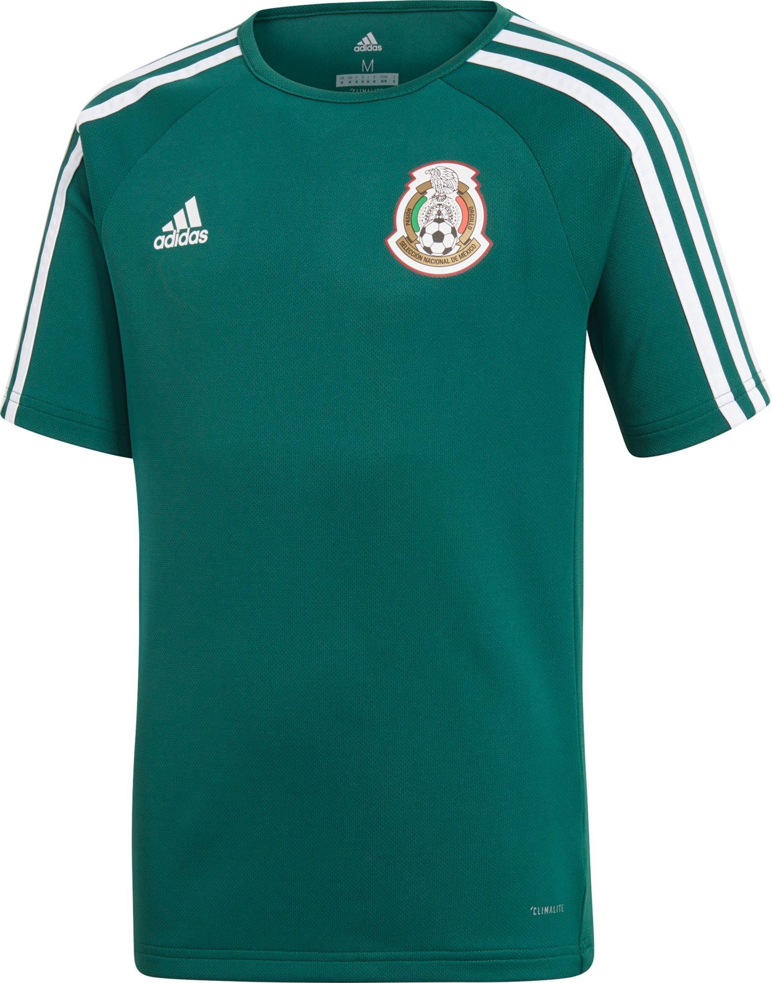 adidas Kids Boy's Mexico Home Fanshirt (Little Kids/Big Kids) Collegiate Green/White Medium