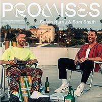 Promises [VINYL]