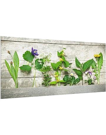 Bilderwelten Panel antisalpicaduras de cristal - Medicinal And Wild Herbs - Horizontal 1:2,