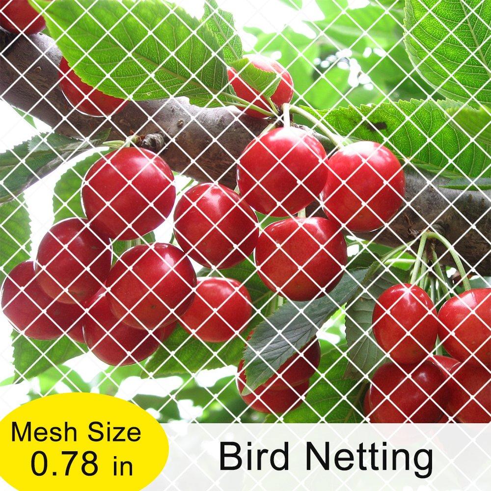 Agfabric Garden Bird Netting Anti Bird Protection Net Fruit Vegetables Flower Garden Pond Netting, 10x36ft, White by Agfabric