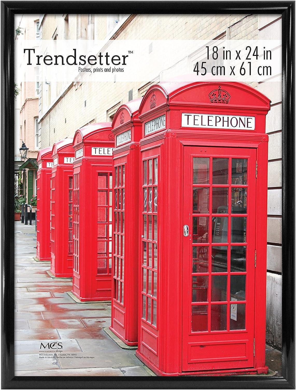 MCS 18x24 Inch Trendsetter Poster Frame