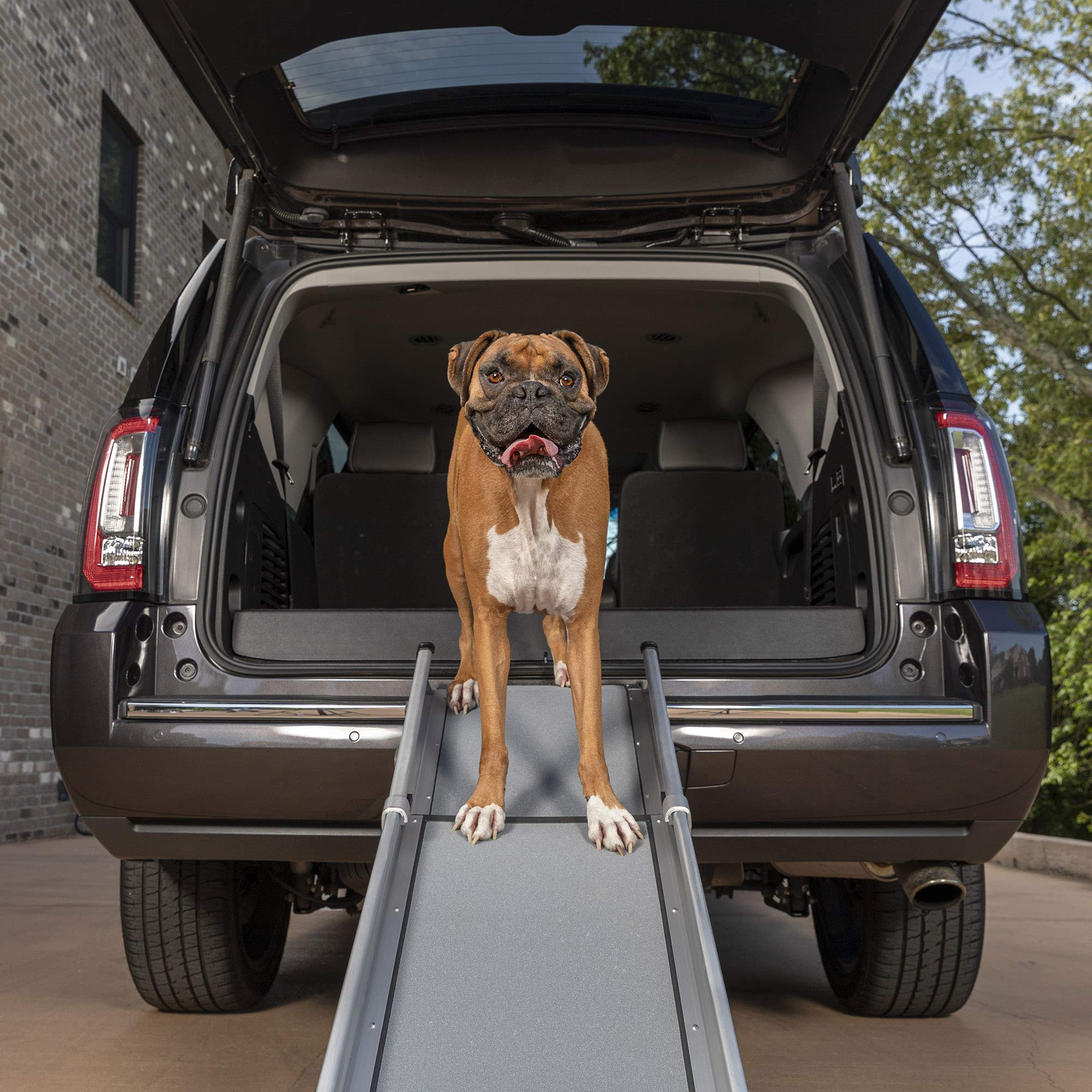 PetSafe Happy Ride Compact Telescoping Dog Ramp - Portable Lightweight Pet Ramp - Great for Cars, Trucks and SUVs - Durable Aluminum Frame Supports up to 300 lb - High Traction Surface Design by PetSafe