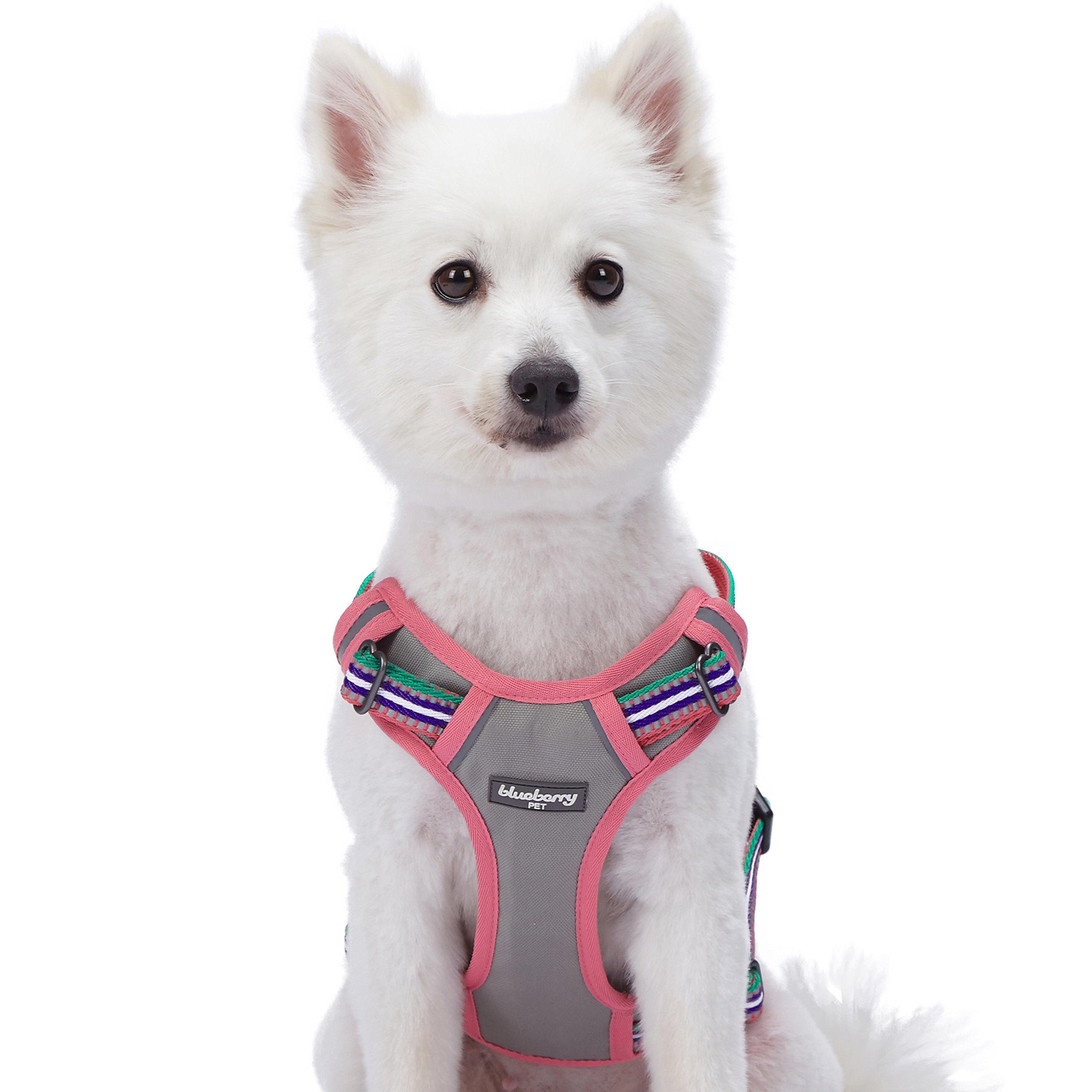 Blueberry Pet 9 Colors Soft & Comfy 3M Reflective Multi-Colored Stripe Padded Dog Harness Vest, Chest Girth 22''-26.5'', Neck 17.5''-26'', Pink, Emerald & Orchid, Medium, Mesh Harnesses for Dogs