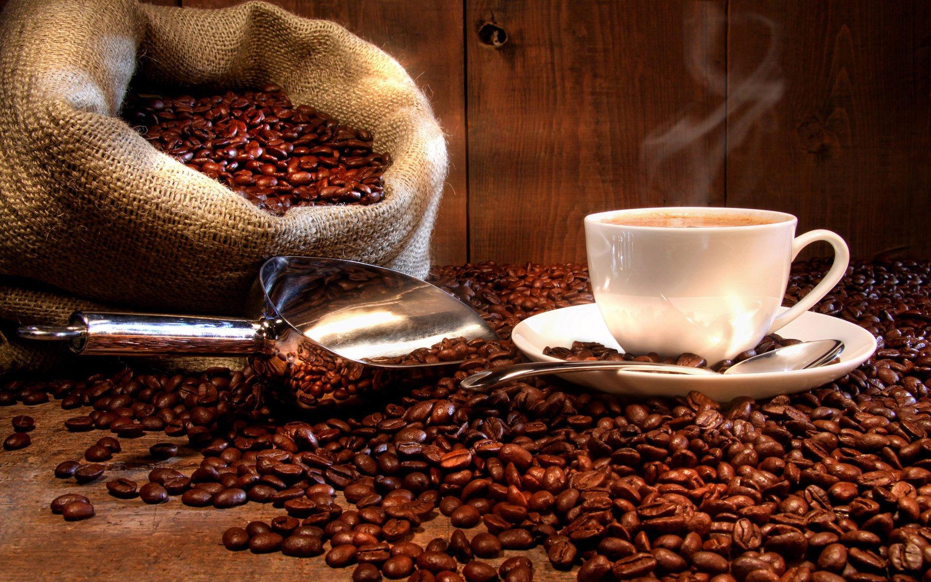 Peru Approcassi Cajamarca Fair Trade Shade Grown Organic Coffee Beans (Medium Roast (Full City +), 15 Pounds Whole Beans) by RhoadsRoast Coffees (Image #2)