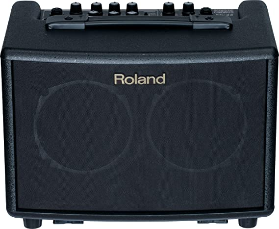 Roland Battery-Powered Acoustic Chorus Amp
