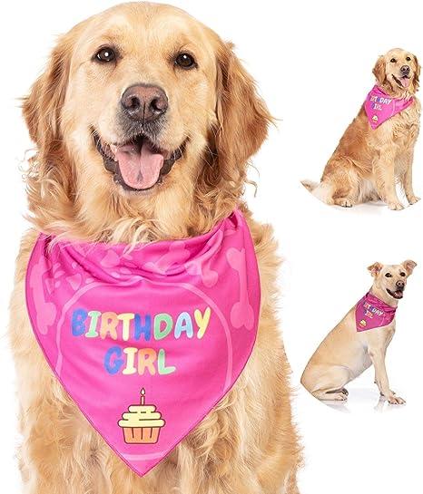 Amazon.com: Bandana de perro estilo Odi, para cumpleaños ...