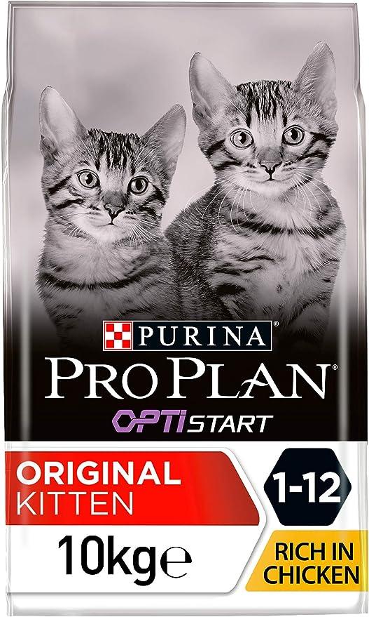 Purina Pro Plan Junior Chicken Comida para Gatos - 10000 gr: Amazon.es: Productos para mascotas