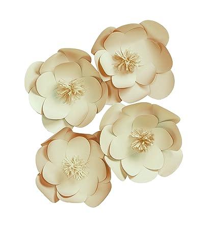 Amazon.com: Darice Wall Décor Kit, Natural paper Flower, 84 Pieces ...