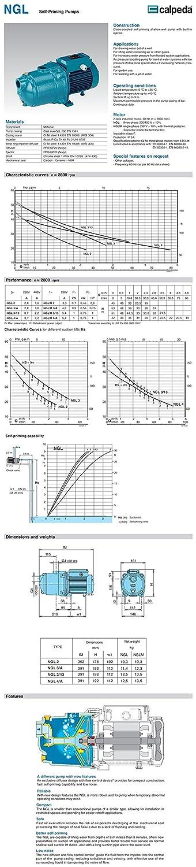 Pompe autoamor/çante NGL4//A 0,75kW 1Hp Trois Phases 400V 50Hz Calpeda NGL