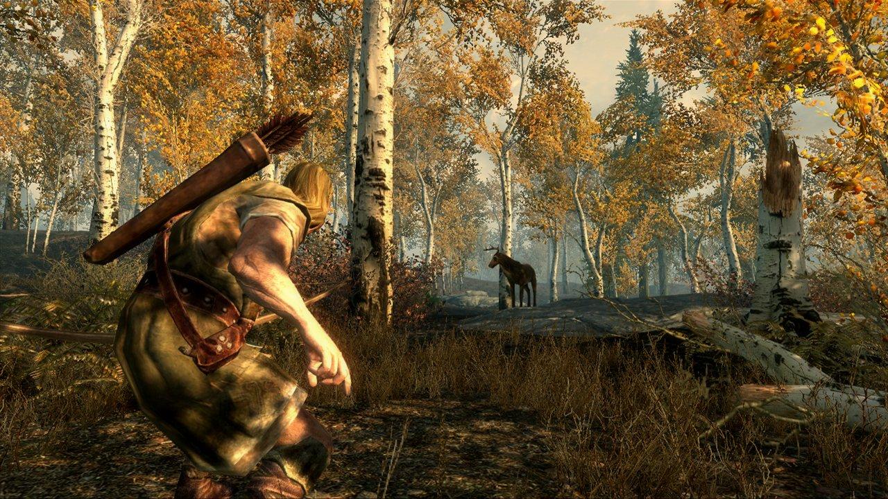 Buy Elder Scrolls V: Skyrim (PC) Online at Low Prices in India