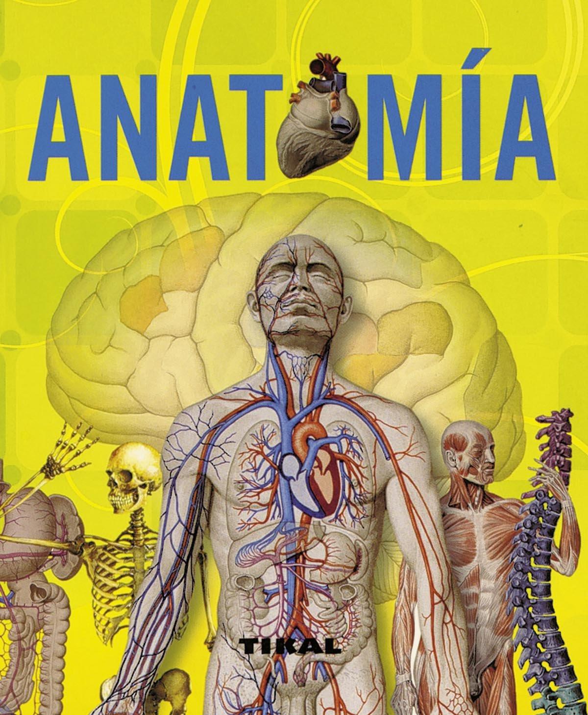 Anatomía (Enciclopedia Universal): Amazon.es: Adriana Rigutti: Libros