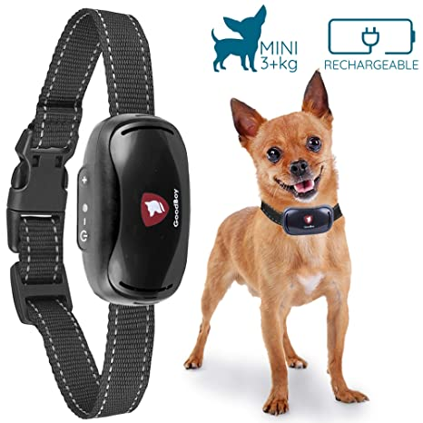 Amazon.com : GoodBoy Small Rechargeable Dog Bark Collar For Tiny To
