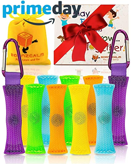 Born2Calm ADHD Fidget Toys Stress and Anxiety Relief - Pack of 10 Silent  Sensory Fidgets for Classroom as Figits Sensory Toys for Kids with Carrying