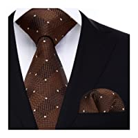 HISDERN Check Wedding Tie Handkerchief Men's Necktie & Pocket Square Set