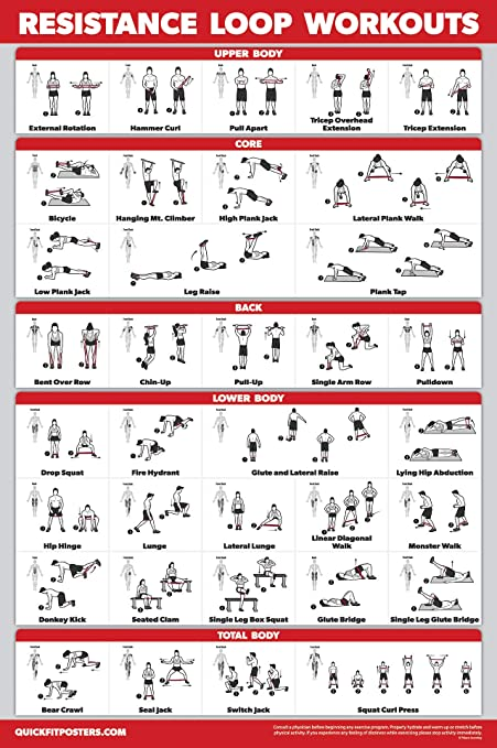 Amazon Com Quickfit Resistance Loop Bands Workout Poster Laminated Exercise Chart For Resistance Band Loops 18 X 27 Sports Outdoors