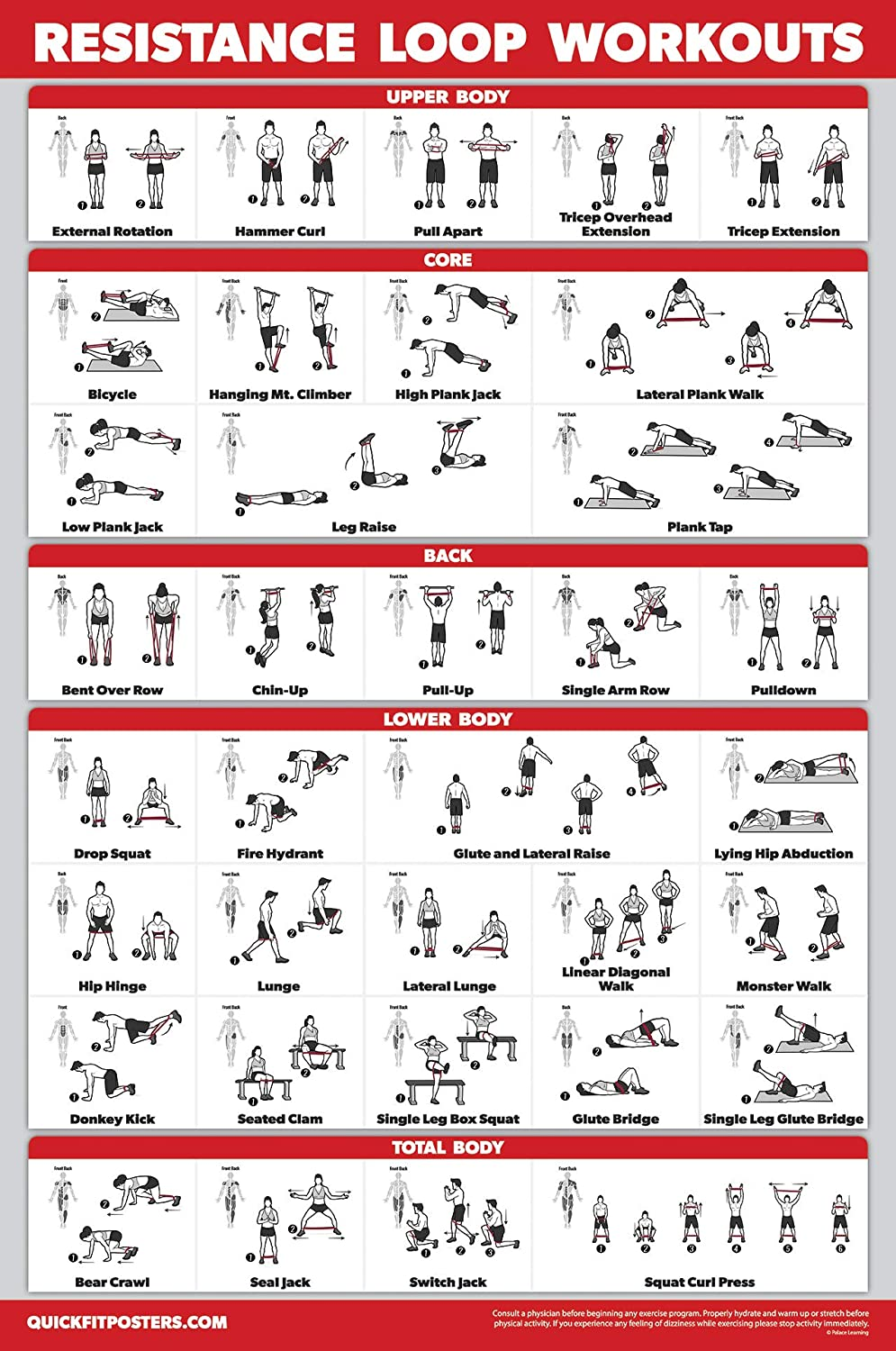 18 x 27 QuickFit Resistance Loop Bands Workout Poster Laminated Exercise Chart for Resistance Band Loops