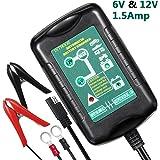 Ladegerät Auto, InThoor Ultra-Sicheres und intelligentes Autobatterie Ladegeräte - KFZ Batterieladegerät für Auto Motorrad, 6V/12V 1.5Amp (EU Stecker)