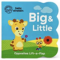 Big and Little (Baby Einstein)