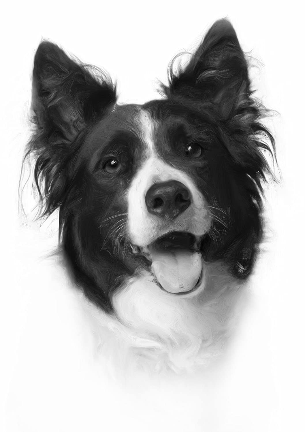 Border Collie Drawing Print Picture. (2) MO-T-VATIONAL