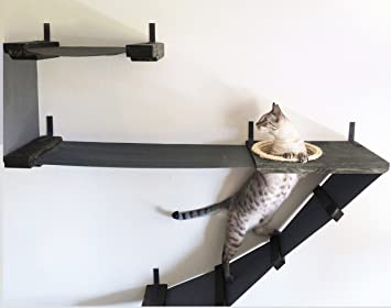 CatastrophiCreations Estructura para Pared, Hamaca de Escalada para Gatos de Lujo: Amazon.es: Productos para mascotas