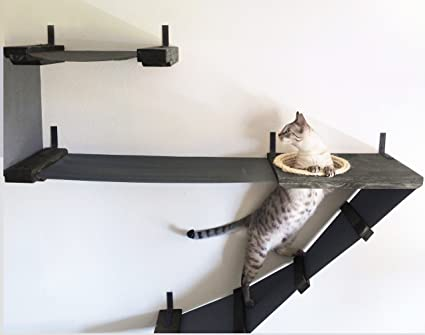 catastrophicreations deluxe cat playplace hammock climbing activity handcrafted wall mounted cat tree onyx amazon     catastrophicreations deluxe cat playplace hammock      rh   amazon