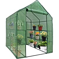 Nova Microdermabrasion Mini Walk-in Greenhouse Indoor Outdoor -2 Tier 8 Shelves- Portable Plant Gardening Greenhouse (57L x 57W x 77H Inches), Grow Plant Herbs Flowers Hot House