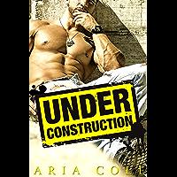 Under Construction (Blue Collar Alphas Book 1) (English Edition)