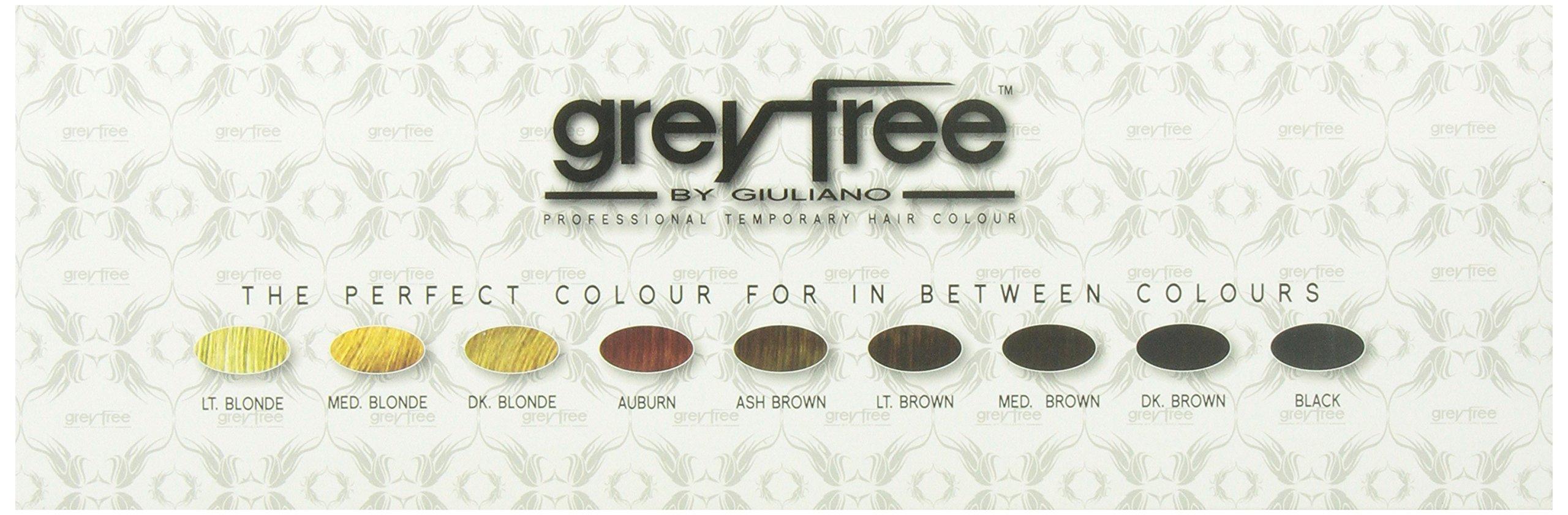 Greyfree Professional Temprorary Hair Color 18 Pieces Display by Greyfree (Image #4)