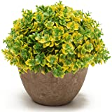 KING DO WAY Artificiale Fiore Casa Decorazione Pianta Finte Fiore Ufficio Verde Artificiale Erba 2# 13cmX15cm