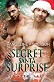 Secret Santa Surprise: Book 29 in the Kindred Tales Series