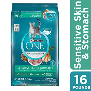 Purina ONE Sensitive Stomach, Sensitive Skin, Natural Dry Cat Food, Sensitive Skin & Stomach Formula
