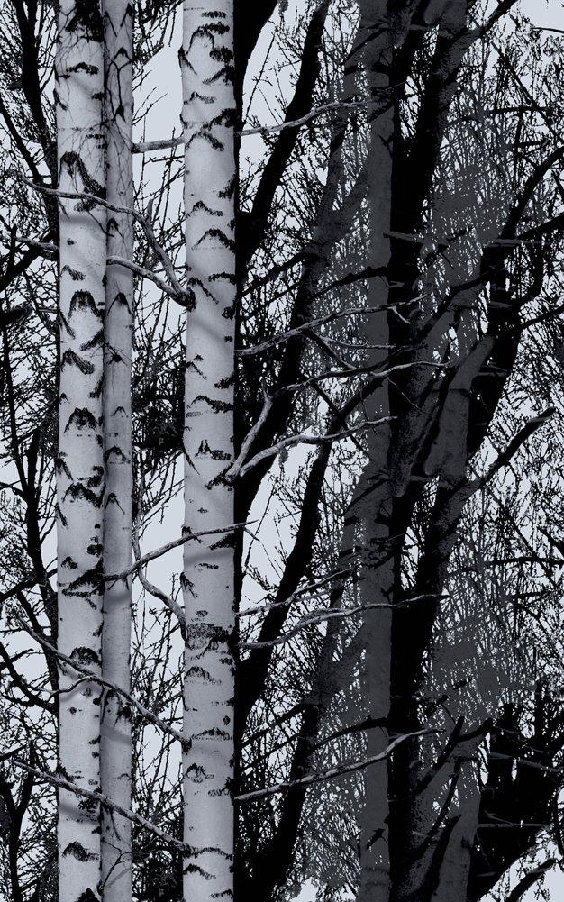DC Fix Premium Reusable Decorative Static Cling Window Film (2 Rolls, Wood Trees/Birch)