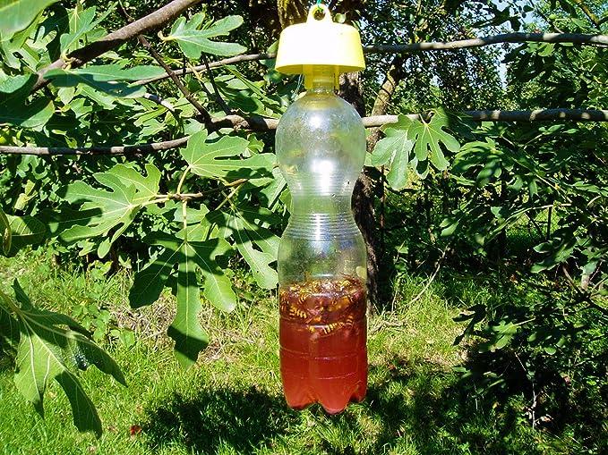 Tap Trap Insect Trap - Tapón para uso con botellas de plástico (5 unidades): Amazon.es: Jardín