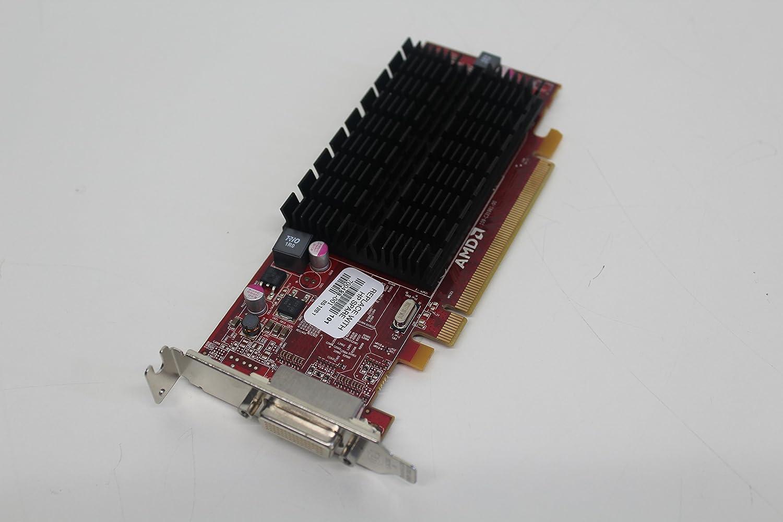 AMD 100-505651 FirePro 2270 0.5GB - Tarjeta gráfica (FirePro ...