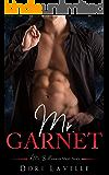 Mr. Garnet (A Mr. Billionnaire Short Story)