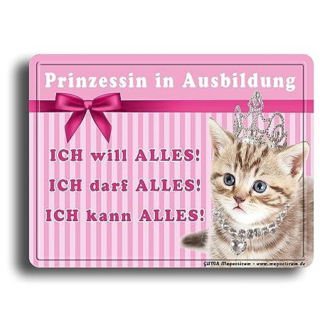 Imán - imagen de princesa gata - placa magnética de 8 x 6 cm ...
