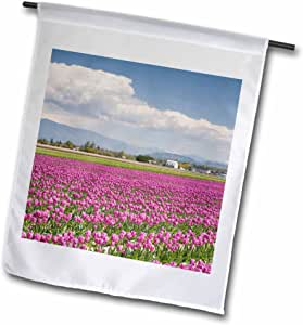 Danita Delimont - Farms - WA, Skagit Valley, Tulip Farm in full bloom - US48 JWI2828 - Jamie and Judy Wild - 18 x 27 inch Garden Flag (fl_96278_2)