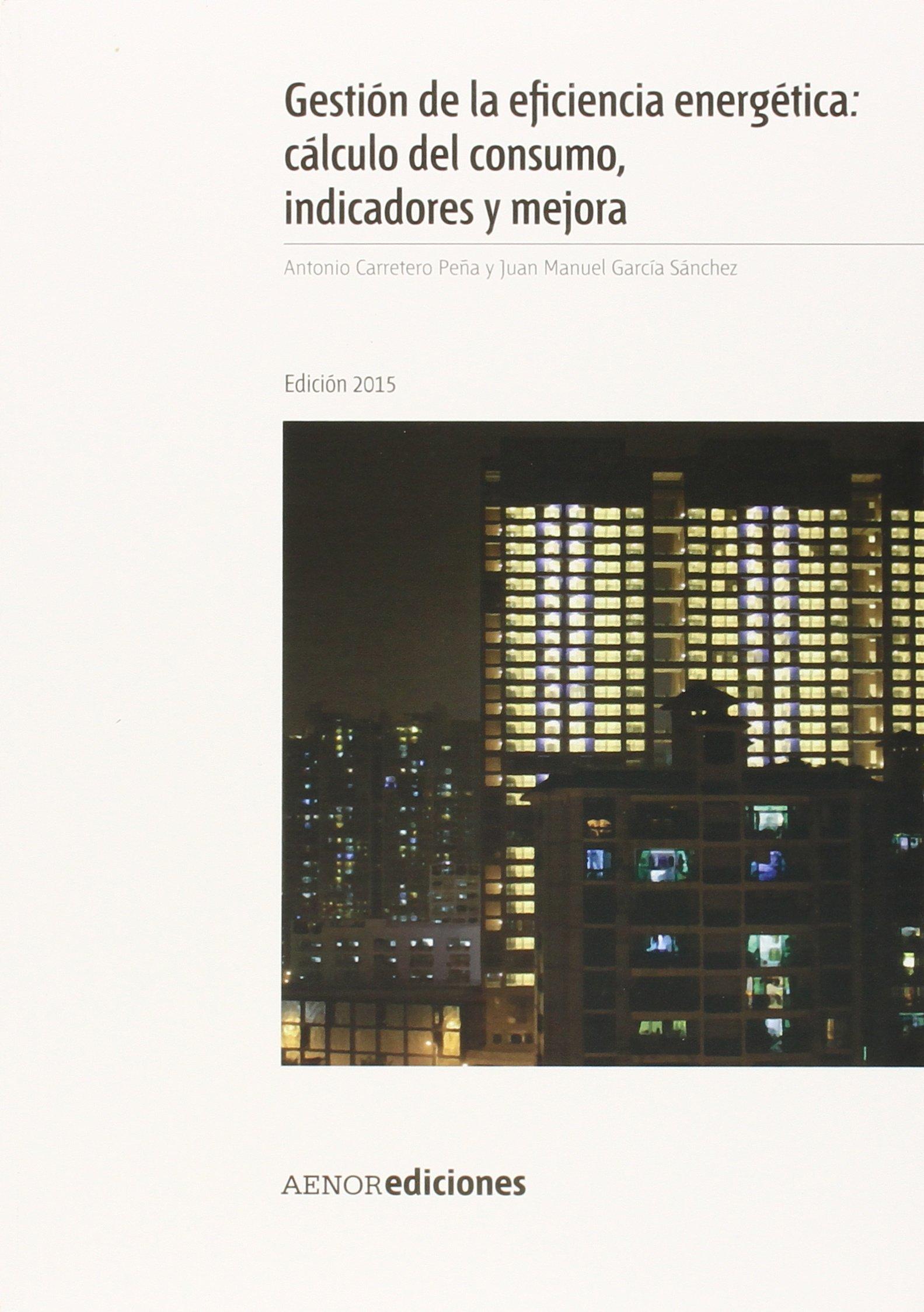 Gestión de la eficiencia energética: cálculo del consumo, indicadores y mejora. Edición 2015