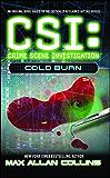Cold Burn (CSI Book 3)