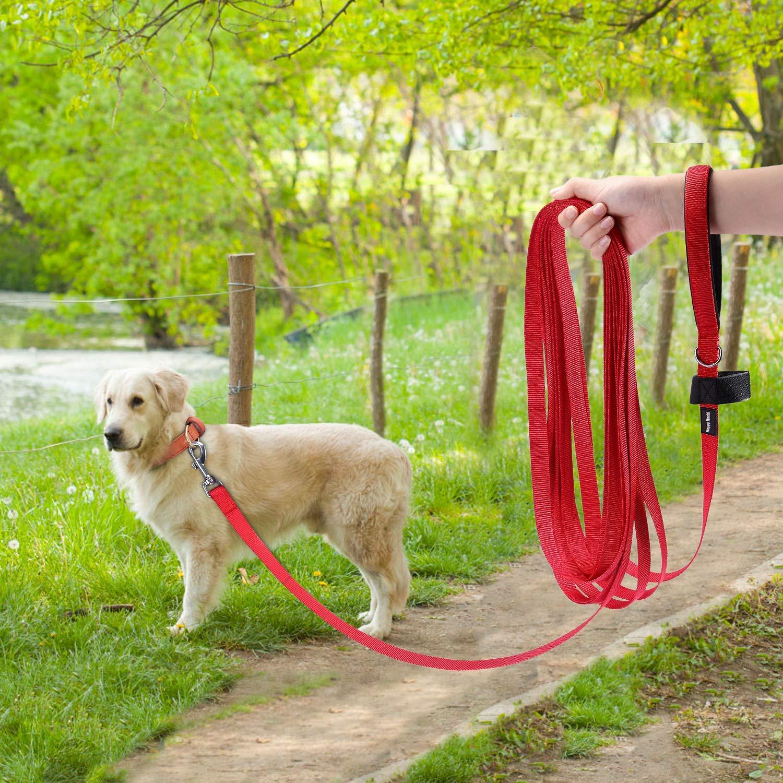 Petcomer Correa para Perro Larga Correas Adiestramiento para Perros Mediano Grande con Asa Acolchada Ideal para Paseo Mascota Entrenamiento Longitud 15m, Negro