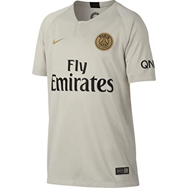 3d4836fb750 Amazon.com: NIKE 2018-2019 PSG Away Shirt (Kids): Clothing