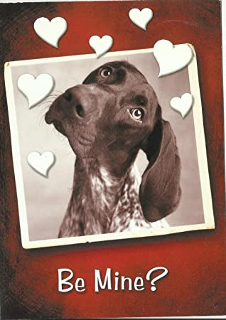 Amazon Com Old Fashioned Valentine Cards Bulk Savings Great
