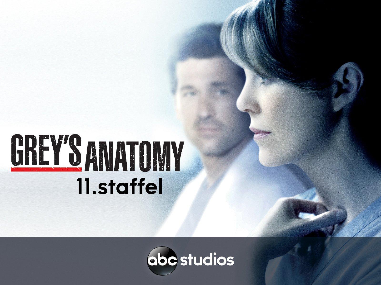 Grey\'s Anatomy - Staffel 11 [dt./OV] online schauen und streamen bei ...