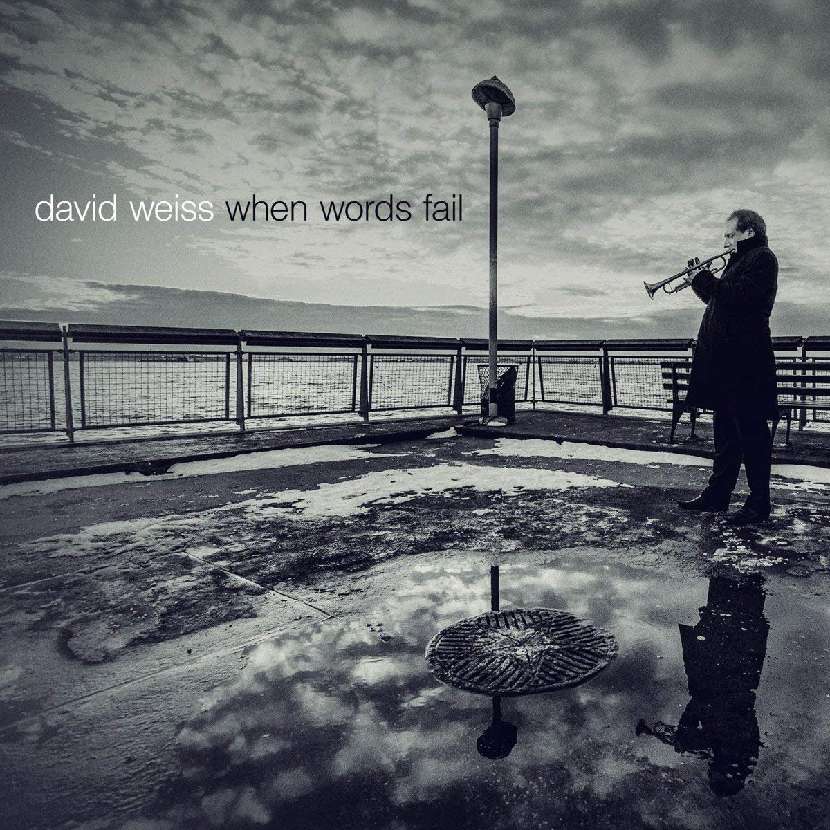 CD : David Weiss - When Words Fail (Digipack Packaging)