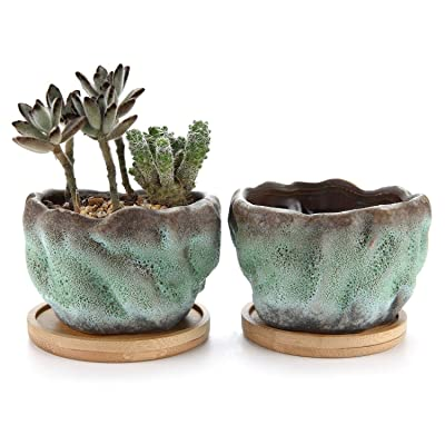 T4U 4 Inch Ceramic Succulent Planter Pot Pack of 2 - Bowl Shape, Small Cactus Herb Plant Pot Window Box Container for Home Office Desktop Tabletop Decoration Gift for Christmas Wedding Birthday : Garden & Outdoor