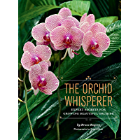The Orchid Whisperer: Expert Secrets for Growing Beautiful Orchids (English Edition)